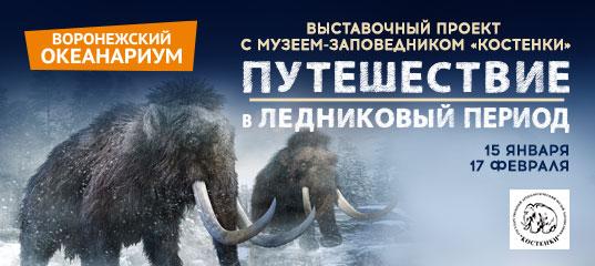 Мастер-класс «Ледниковый период» - Вятский палеонтологический музей | 240x537